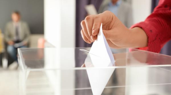 survey poll vote